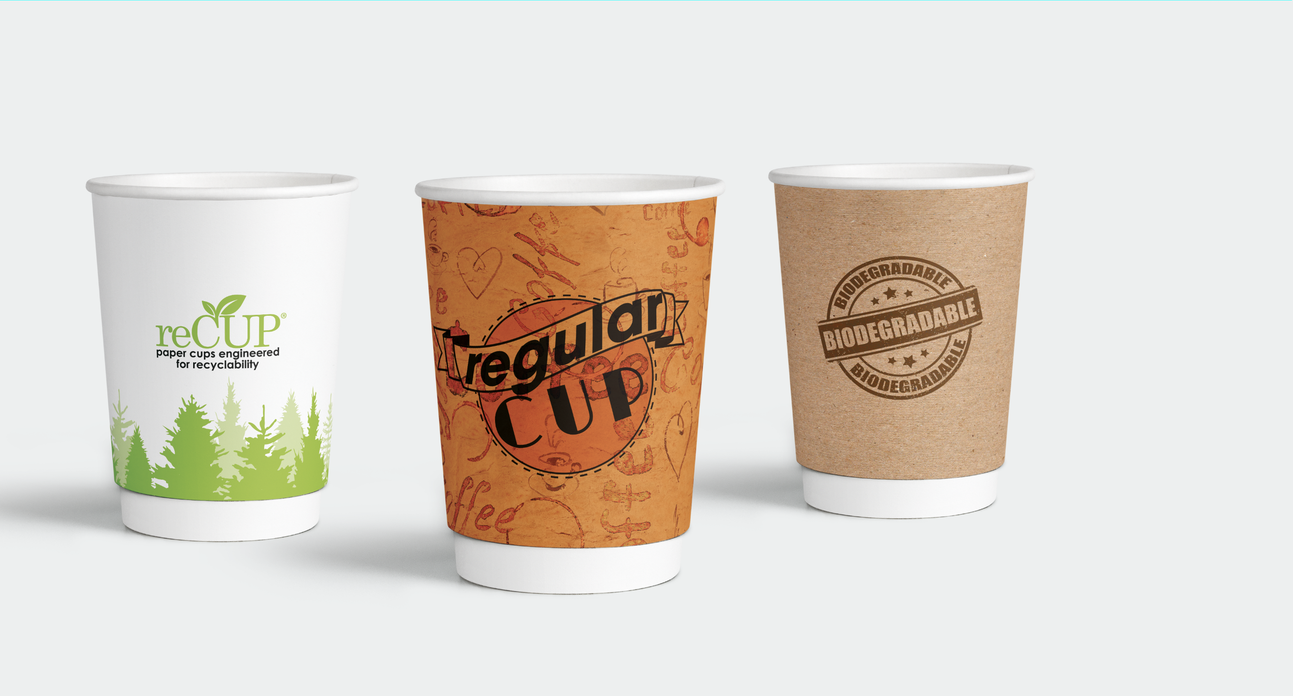 compare sustainable cup types buyers guide